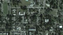 646 Golden Raintree Pl, Brandon, FL 33510